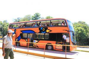 世界一周旅行南米絶景観光スポットイグアスの滝行き方バス