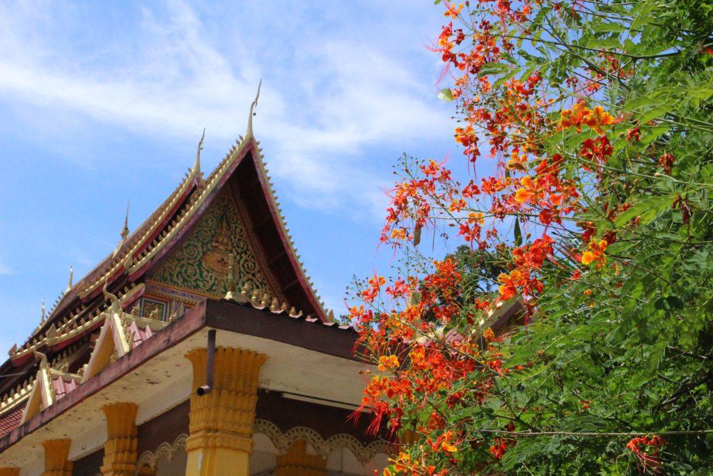 世界一周旅行アジアでおすすめの国ラオスのルアンパパーン