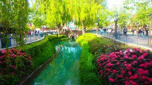 ディズニーランドパリ綺麗すぎるパーク内とお花