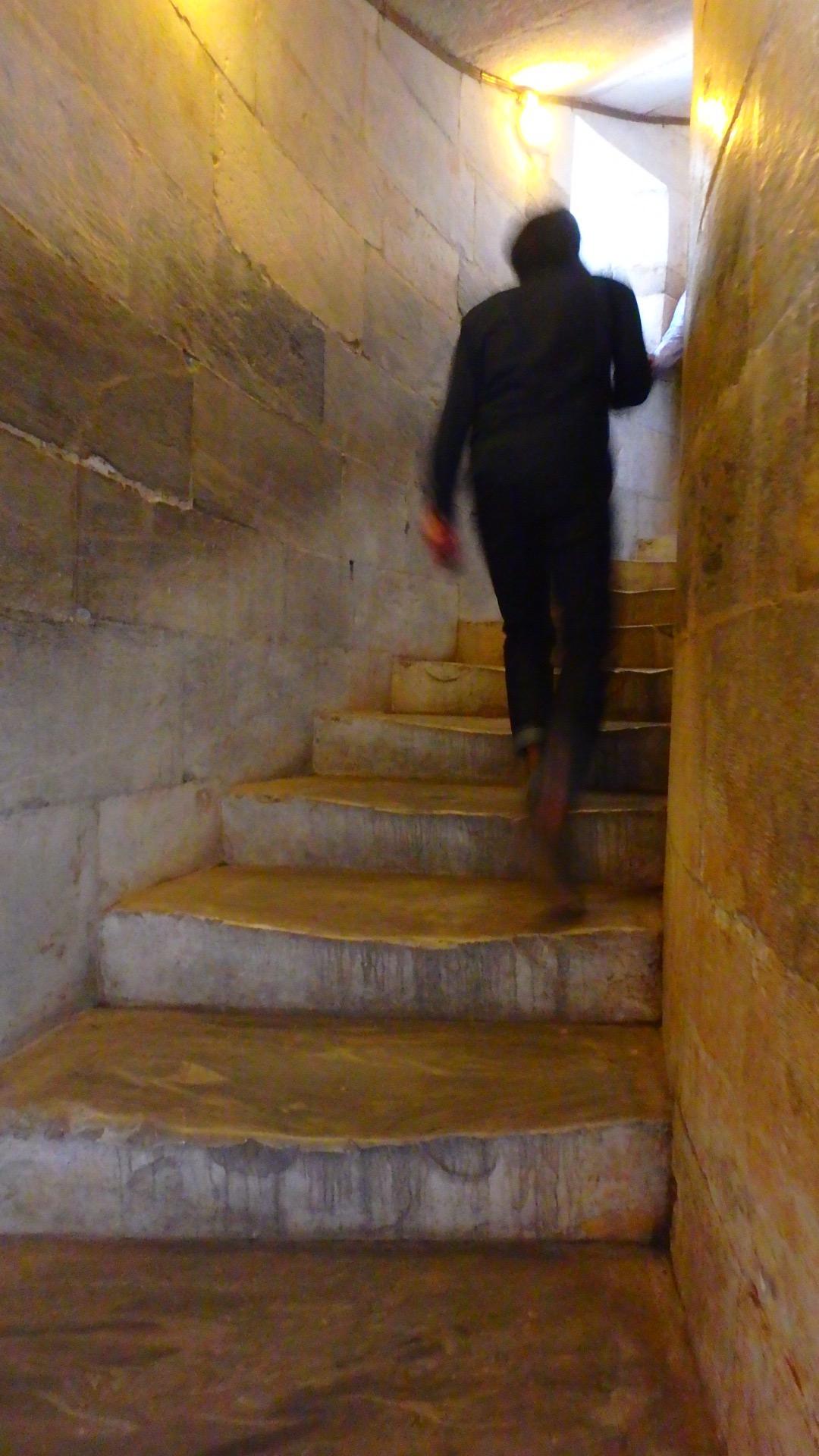 ピサの斜塔内部 階段