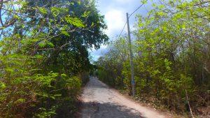 バリ島離島のレンボンガン島の島内