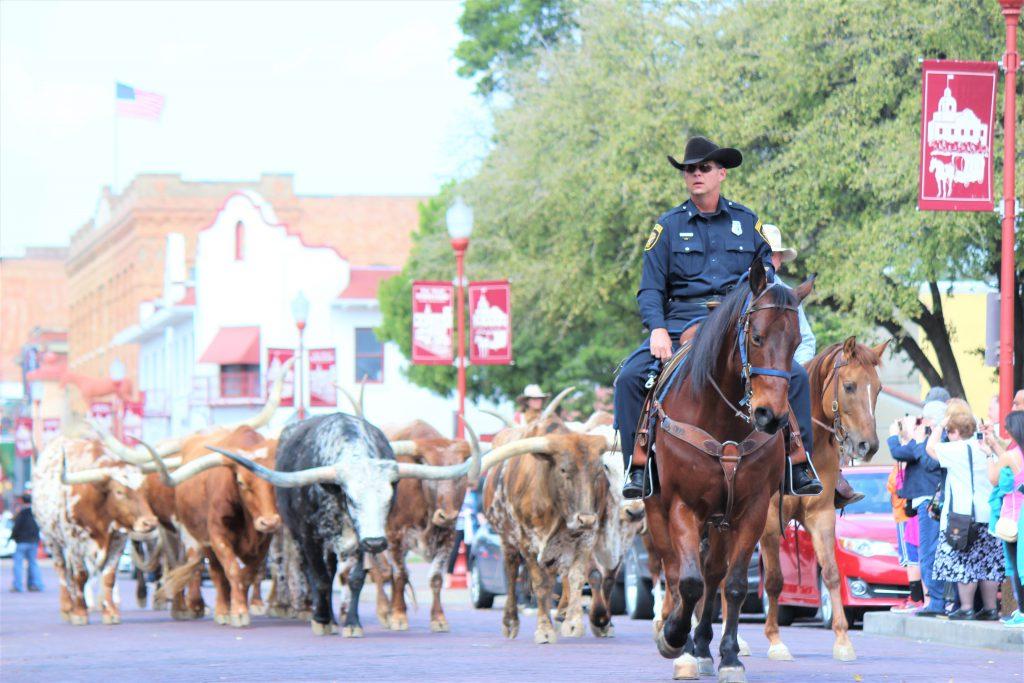 アメリカ横断の旅 西部 カウボーイのパレード