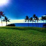 歩きスマホは罰金!住んでみて知った、意外と厳しい《ハワイのルール》7つ まとめ