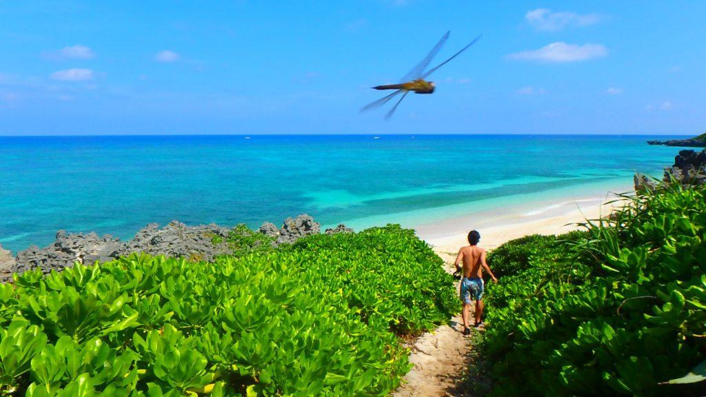 与論島のおすすめ シュノーケリングスポット メーラビビーチ