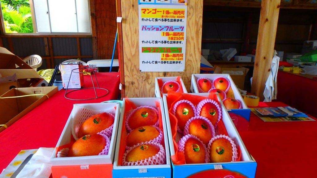 与論島のおすすめお土産 マンゴーと南国フルーツ