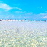 与論島【百合ヶ浜】が見れるのはいつ?行き方は?出現時期と2018年のスケジュール