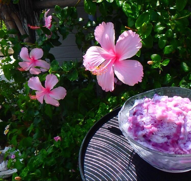 お花を入れると写真が華やかに!インスタのコツ