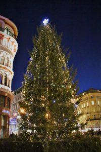オーストリア ウィーンのクリスマスツリー