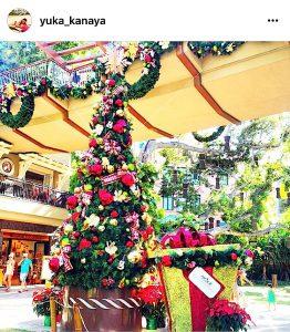 ハワイのクリスマス ワイキキ ロイヤルハワイアン