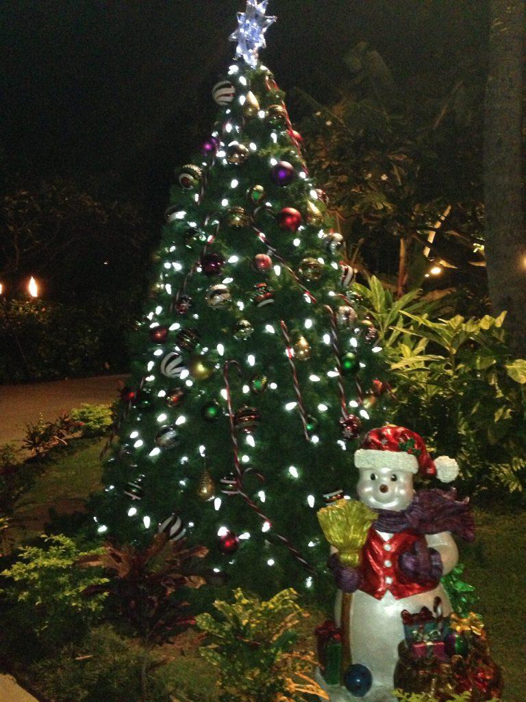 ハワイのクリスマスイルミネーションはいつから?