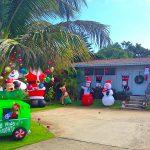 ハワイのクリスマスイルミネーション!ワイキキ・アラモアナ・カハラ