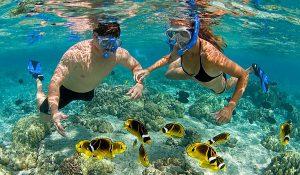 フーコック島でシュノーケリング An Thoi  (アントイ諸島)