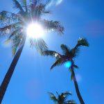 《フーコック島で1日カーチャーター》空港からビーチや市内へのおすすめの移動手段