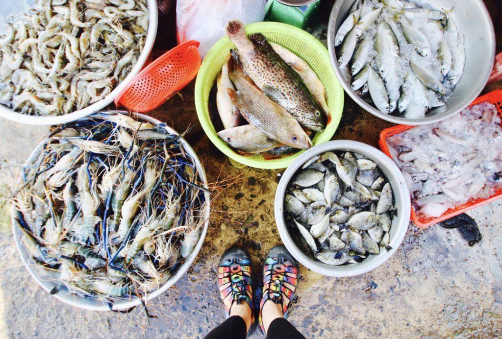 カンボジア Kampotで魚釣り