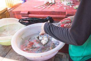 カンボジア ケップの市場で美味しい蟹を食べる