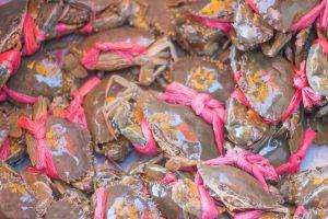 カンボジア ケップのクラブマーケット 蟹