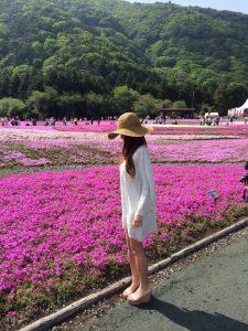 GWのおすすめ国内旅行 富士芝桜まつり 山梨県