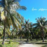 フィリピン旅行ならアイランドホッピングがおすすめ!島周遊ツアーで観光を満喫