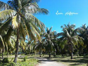 フィリピン旅行のおすすめ アイランドホッピング