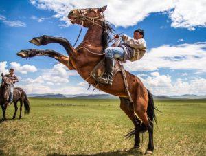 モンゴルで乗馬体験ツアー