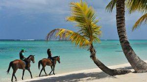 モーリシャスで乗馬体験