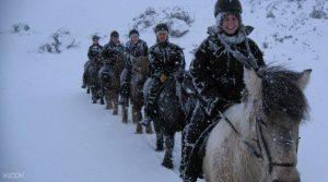 アイスランドで乗馬体験 雪国 冬