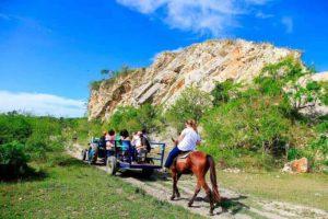 ハバナで乗馬体験ツアー