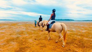 海外旅行先で乗馬体験