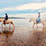 【乗馬ができる海外旅行先一覧】絶景と自然の中で楽しむおすすめアクティビティ