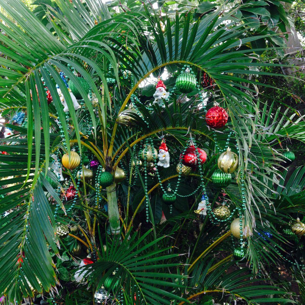 ハワイ ビーチのクリスマスツリー