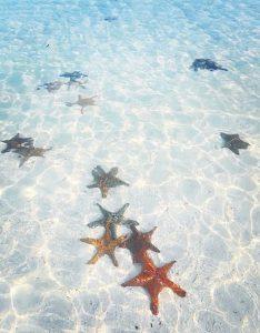 ザンジバル島のビーチが綺麗すぎる