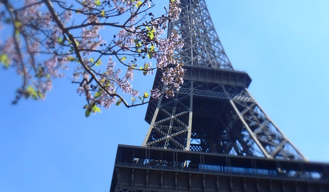 3月・4月におすすめの海外旅行先