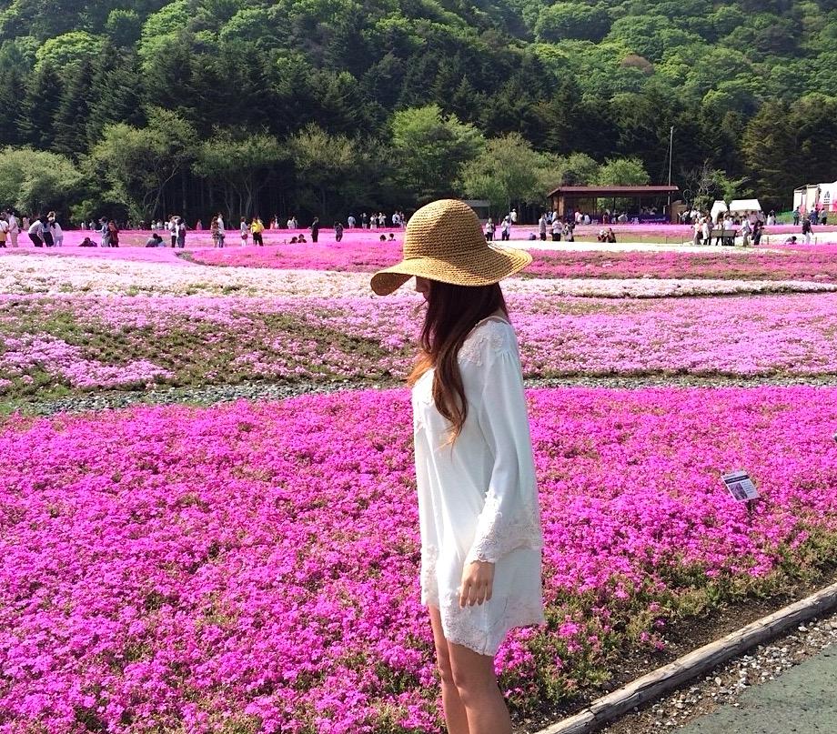 芝桜が綺麗 山梨旅行