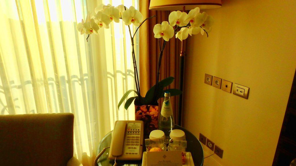 パラッツォ パリジ ホテル & グランド スパ お部屋の内装