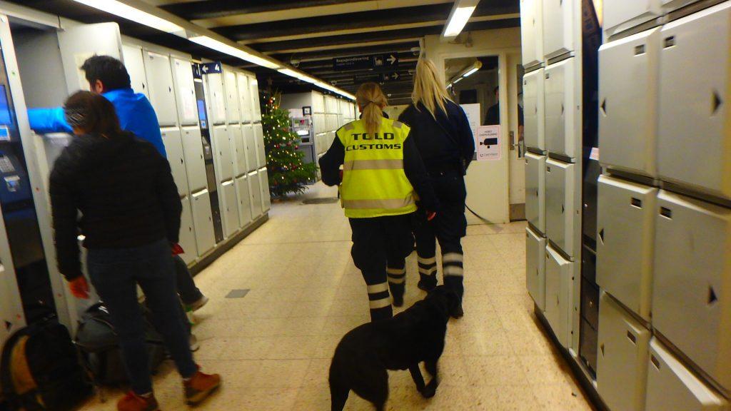 コペンハーゲン 麻薬犬