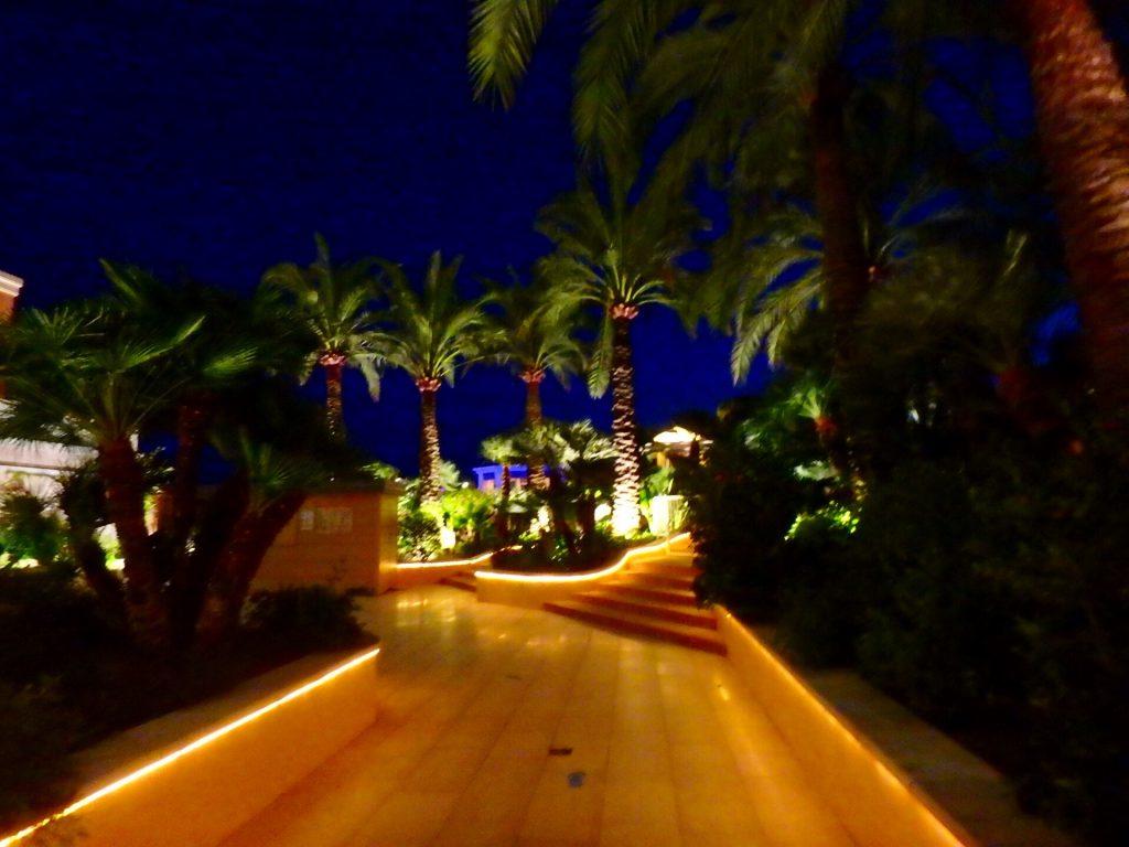 モナコ 夜