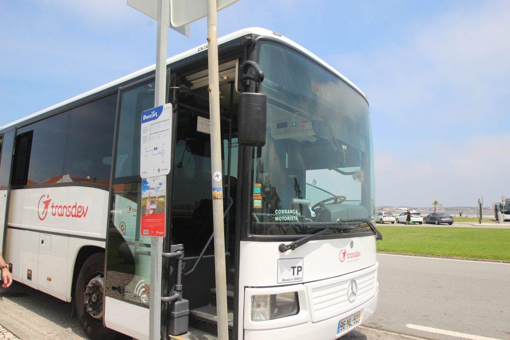 コスタノバビーチ バス