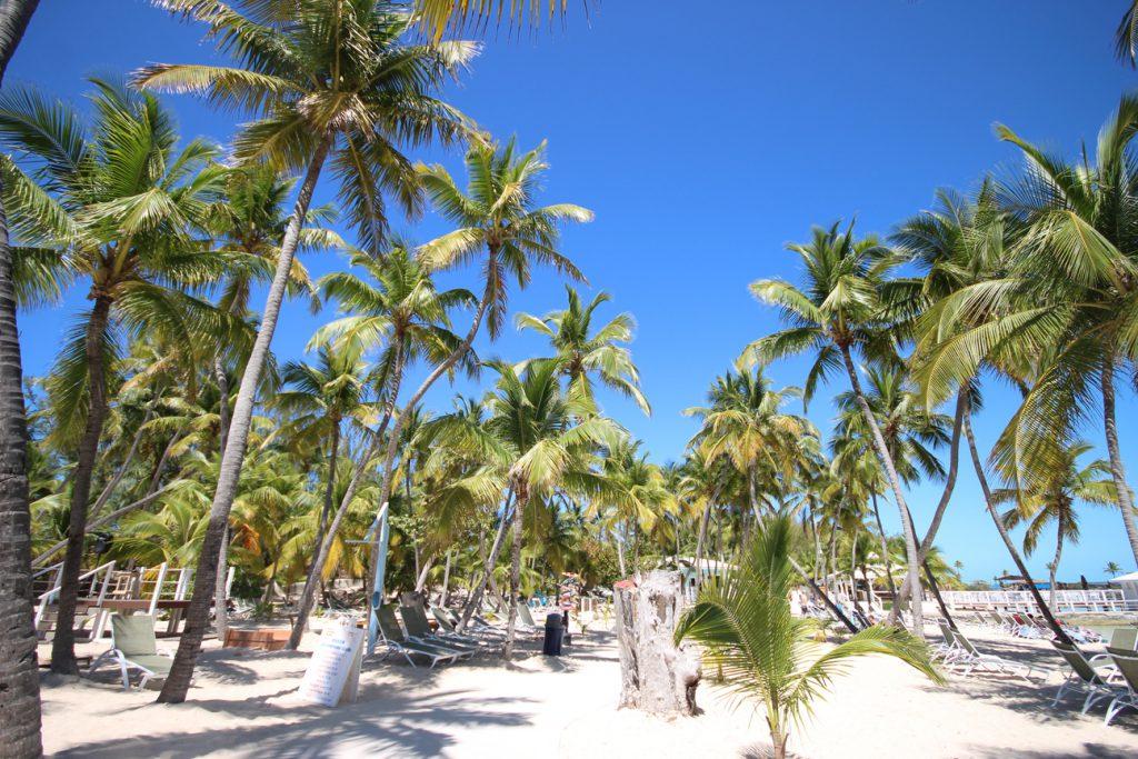 バハマ 旅行記 ブログ