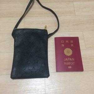 100均 海外旅行グッズ パスポートケース