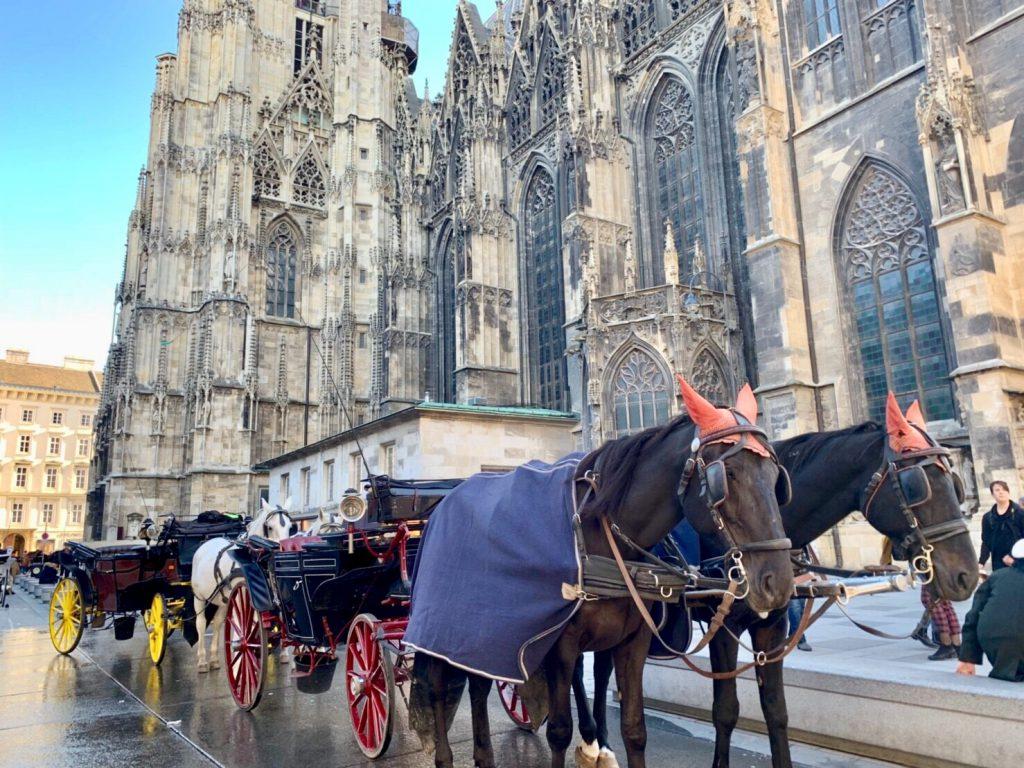 ウィーン 旅行 ブログ