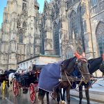 オーストリア女子旅ブログ。ウィーン1日観光旅行記〜ザッハトルテに大聖堂に