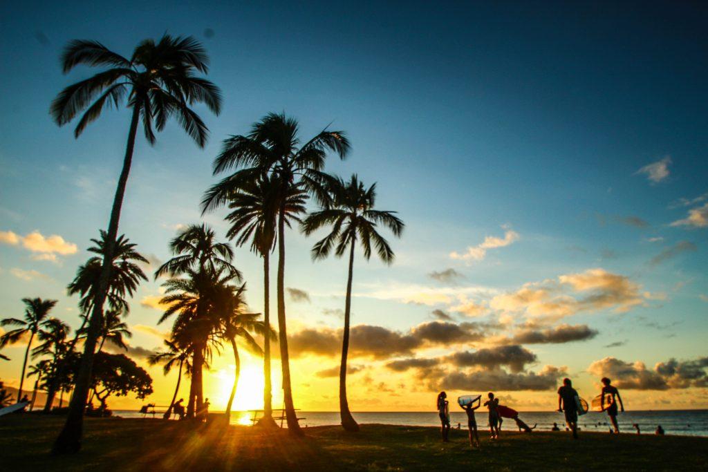 ハワイ 仕事