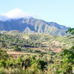 ハワイで農業生活!1日のスケジュール&仕事内容を公開