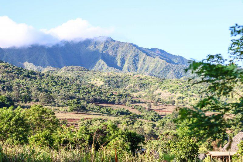ハワイ ノースショア 住む ブログ