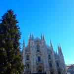 冬のミラノ旅行記②ドゥオーモで美味しいランチ|女子旅ブログ