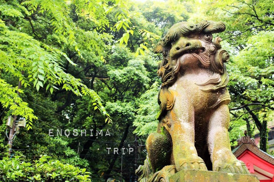 江ノ島観光 おすすめ ブログ