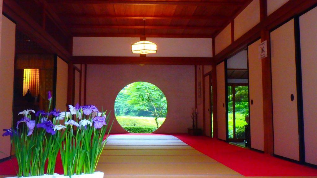 鎌倉 明月院 ブログ 観光